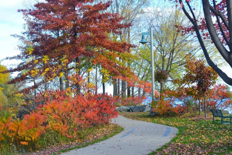 Canada Ontario Photos :: Belleville :: Belleville. Memory Lane Fall lovely colour