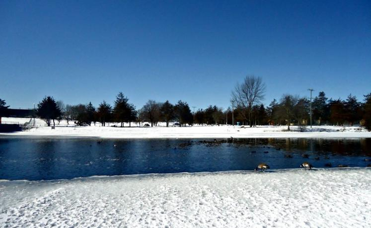 Canada Ontario Photos :: THERESA :: Winter Belleville Ontario