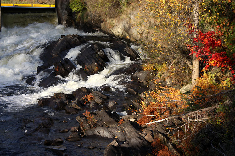 Canada Ontario Photos :: Bracebridge :: Bracebridge - a fragment of the river