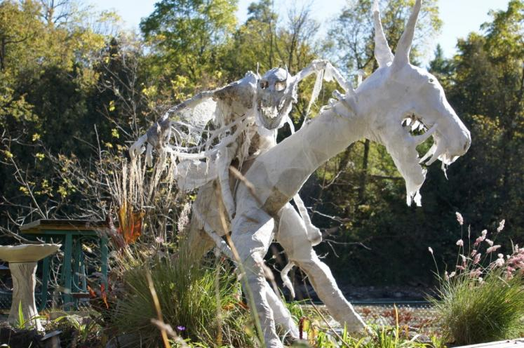 Canada Ontario Photos :: Halloween  :: Twilight Zoo Collection in Elora