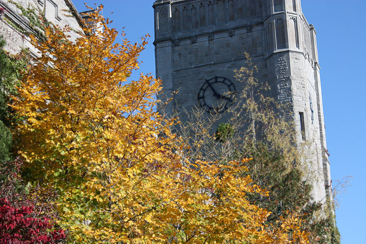 Canada Ontario Photos :: Guelph :: University of Guelph