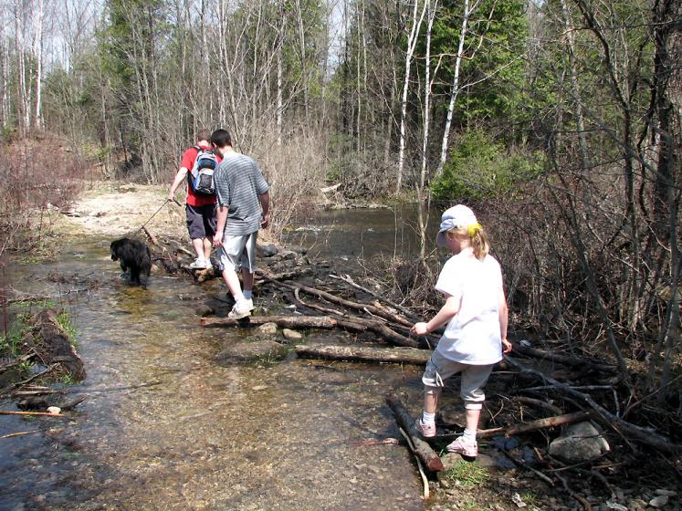 Canada Ontario Photos :: Hilton Falls Park :: Hilton Falls park - crossing the river