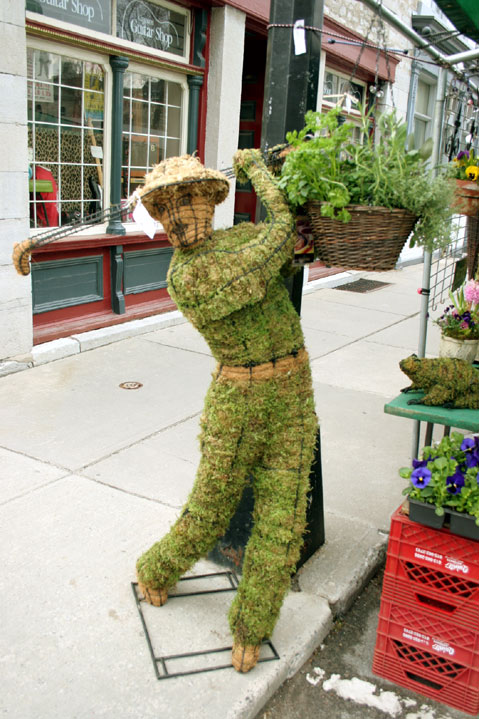 Canada Ontario Photos :: RomKri :: Kingston. Local Market.Golfer