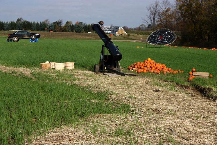 Canada Ontario Photos :: Misc :: A cannon loaded with pumpkins at Whittamore farm