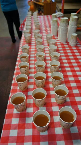 Canada Ontario Photos :: Misc :: Apple Cider at Wellesley Apple and Cheese Festival