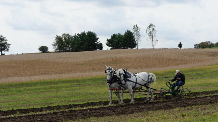 World Travel Photos :: Countryside :: Ontario. Horse Drawn Ploughing at  International Ploughing Match in Roseville