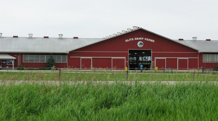 Canada Ontario Photos :: Misc :: Open Farm 50th Anniversary at Slits Dairy Farm in Brunner