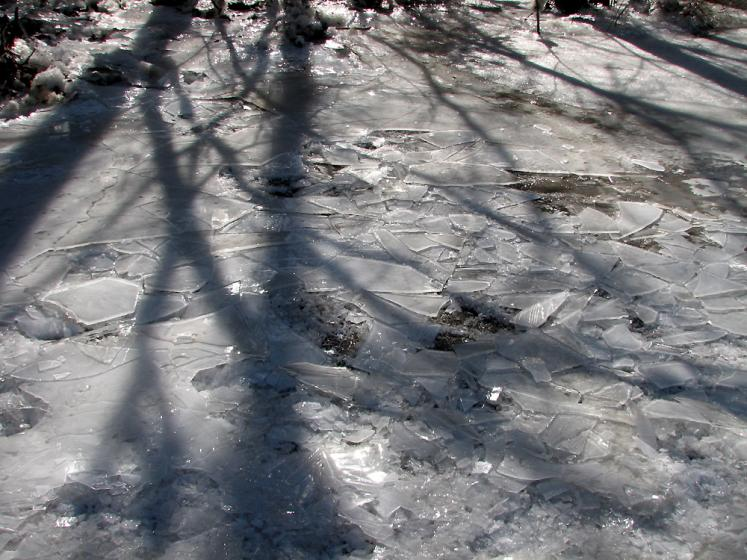 Canada Ontario Photos :: Winter :: Winter shadows