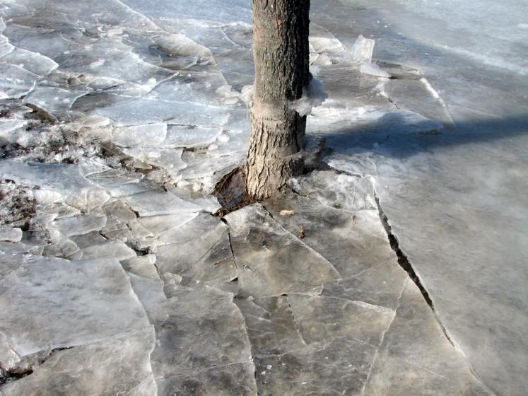 World Travel Photos :: Winter  :: Ontario - broken ice