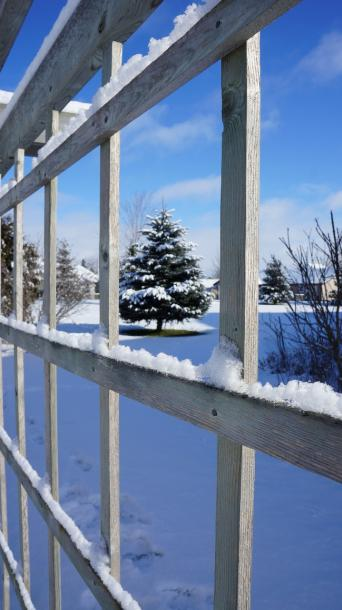 World Travel Photos :: Winter  :: Picture Perfect Threw Ice Snow Trellis New Hambur, Ontariog