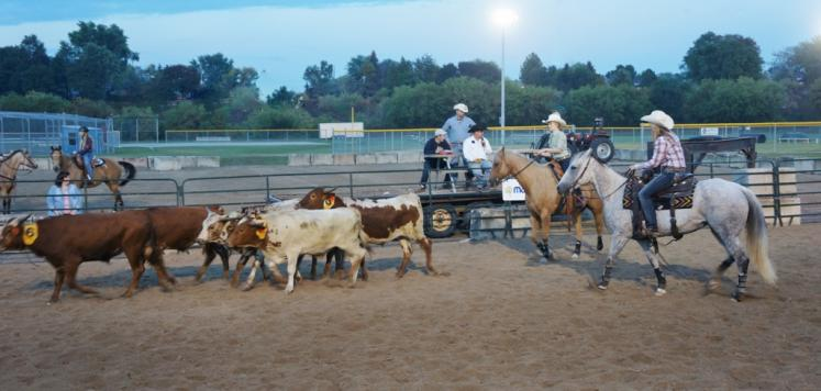 Canada Ontario Photos :: New Hamburg :: Team Sorting at New Hamburg Fall Fair