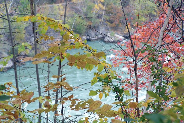 Canada Ontario Photos :: Niagara Falls :: Niagara river, October