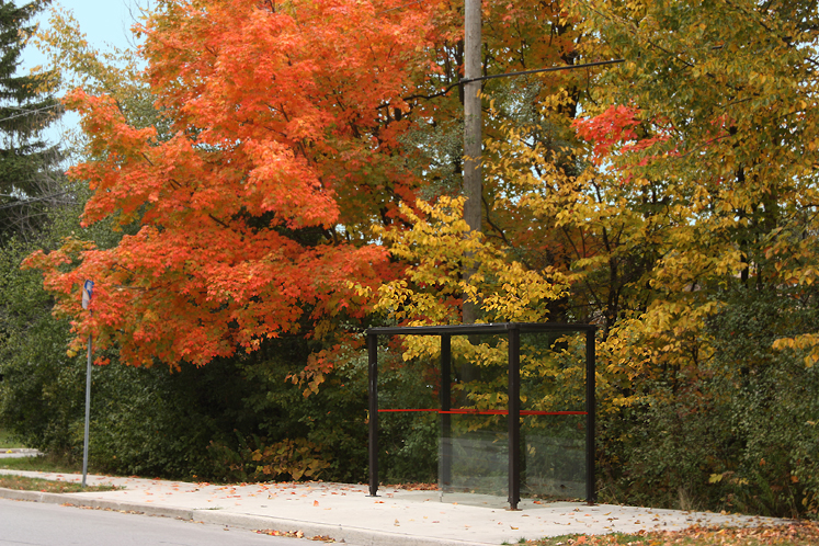 World Travel Photos :: Fall views :: Ontario. Richmond Hill - a bus stop