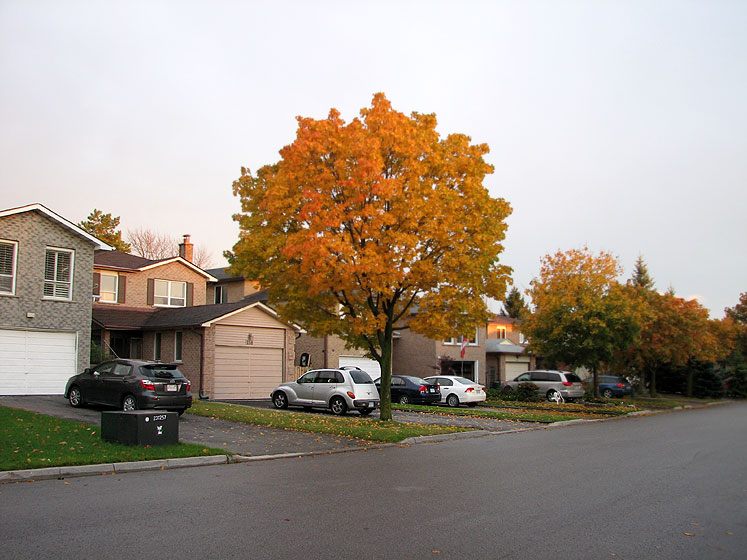 Canada Ontario Photos :: Richmond Hill :: Richmond Hill. Fall - a silent street