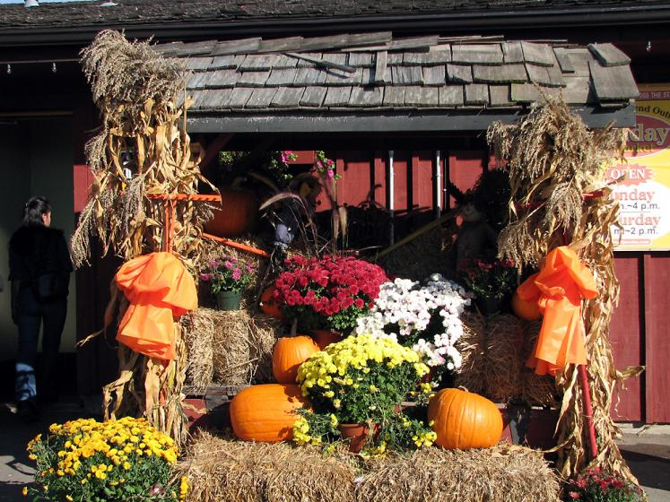 Decoration ideas for fall festival decoration ideas for Pictures of fall decorations for outdoors
