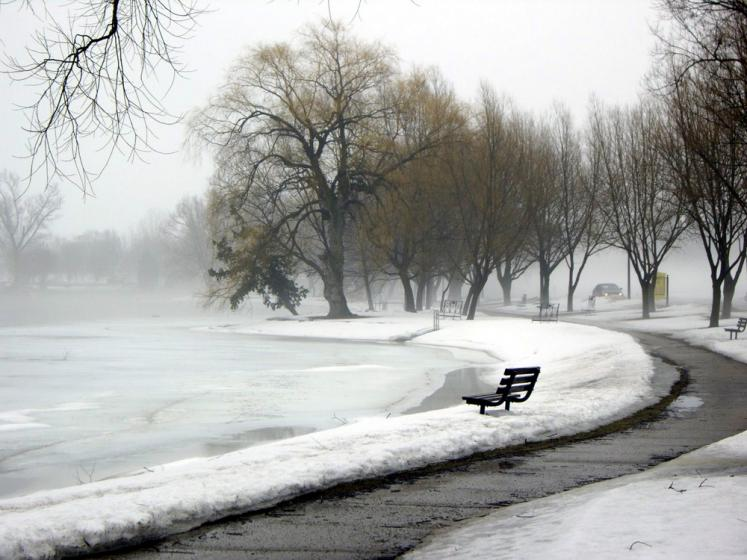 Canada Ontario Photos :: Polin :: Stratford - a bench in the park