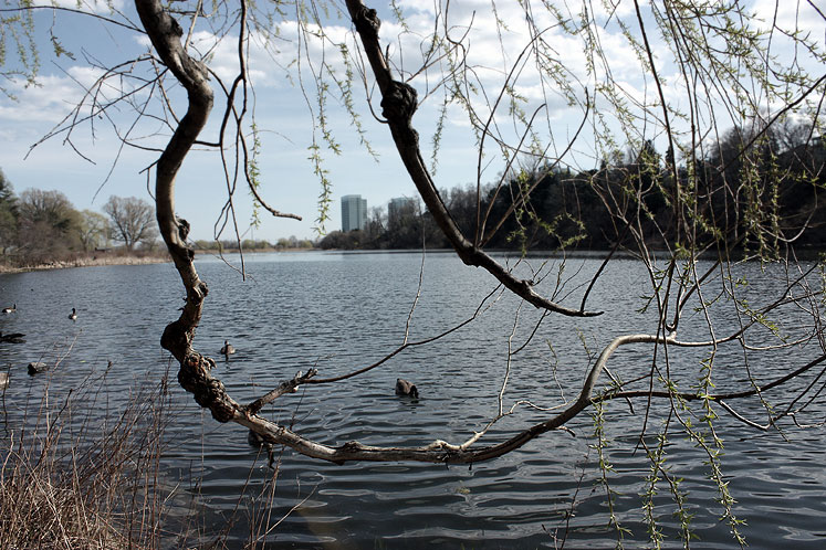 Canada Ontario Photos :: Landmarks :: Toronto. High Park - view on the city