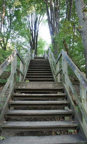 Canada Ontario Photos :: Toronto :: Steps down to Glen Stewart Ravine Park Beaches Toronto