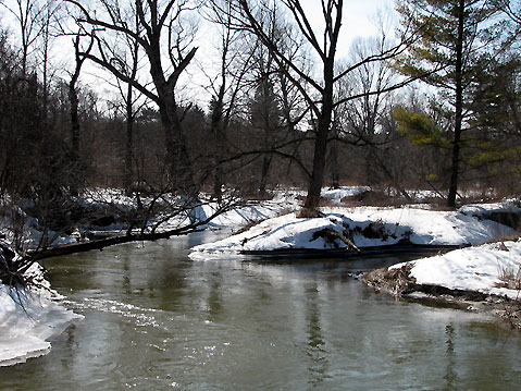 Canada Ontario Photos :: Vaughan - Kortright Conservation Area :: Ontario. Early spring