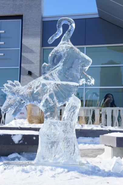 Canada Ontario Photos :: Waterloo :: Icedog festival downtown Waterloo