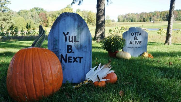 Canada Ontario Photos :: Halloween  :: Nauman´s Pumpkin Patch St.Clements. Halloween decorations.